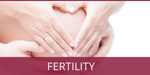 fertility solutions | Annex Naturopathic Doctors Clinic Toronto